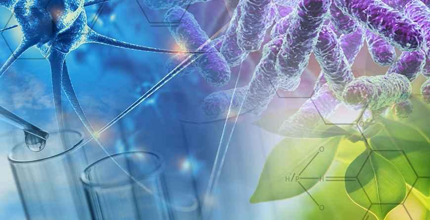 生物设计研究所在研究工作中宣布了新的中心–最先进的X射线实验室